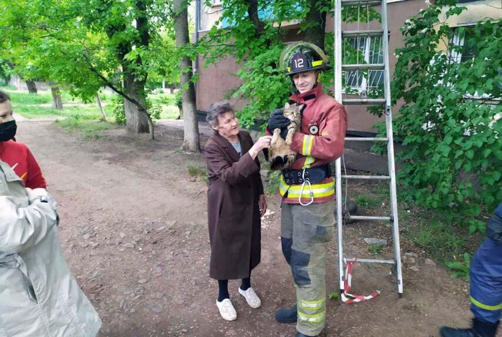 Пожарные спасли котика Кривой Рог