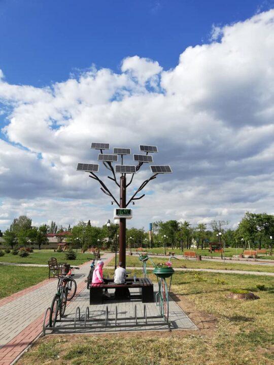 Чудо-дерево в Покровском