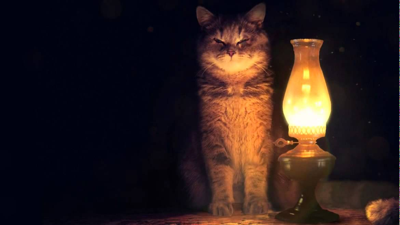 Выходной без электричества: завтра в Днепре планируют отключения света