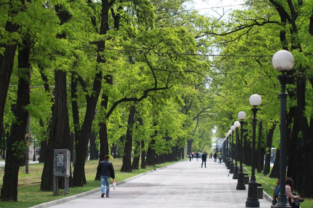 МОЗ: за сутки в Украине зафиксировано почти 500 новых заболевших COVID-2019