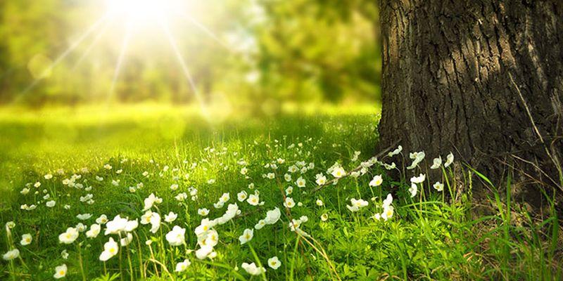 14 мая: какой сегодня праздник