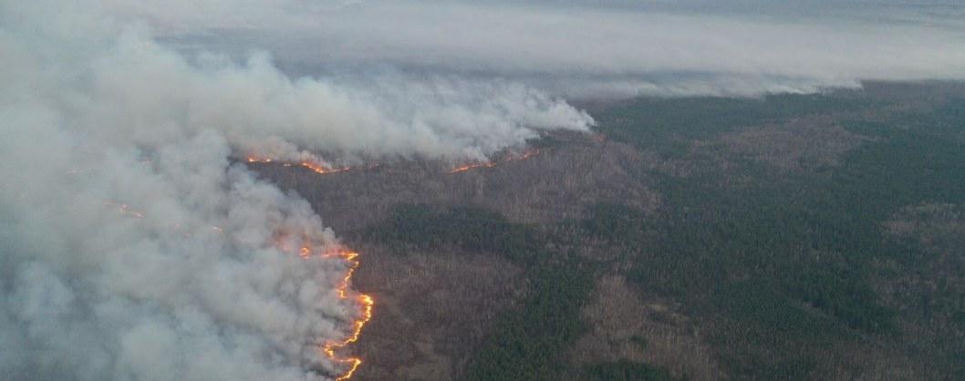 Как спасатель из Днепра тушил лесной пожар в Чернобыле (ВИДЕО)
