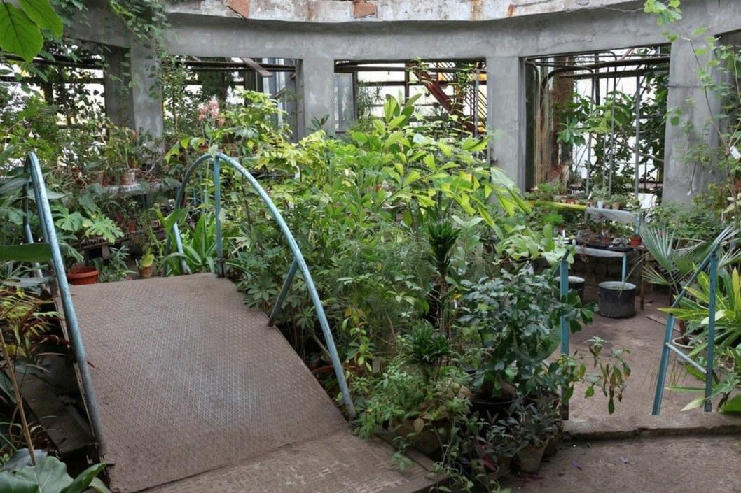 Дождались: в Днепре открывается Ботанический сад ДНУ