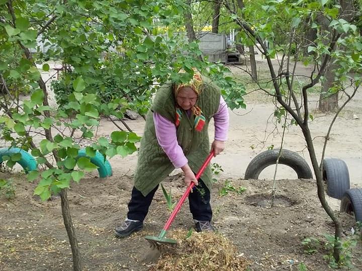 Сила природы: в Днепре 91-летняя бабушка облагораживает двор своей многоэтажки (ФОТО)