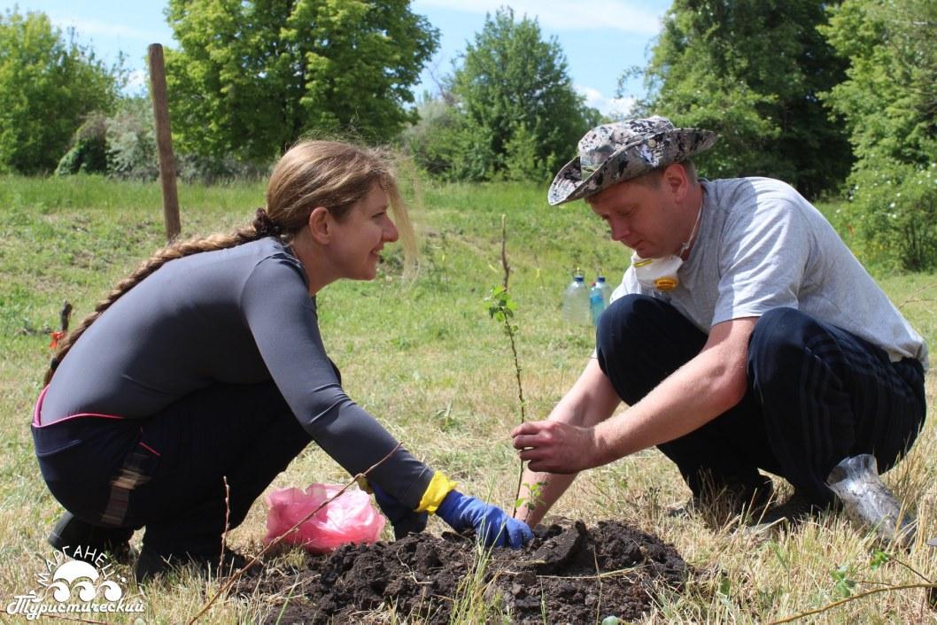 Высадили 70 деревьев: на Днепропетровщине облагородили территорию возле Марьевской вербы (ФОТО)