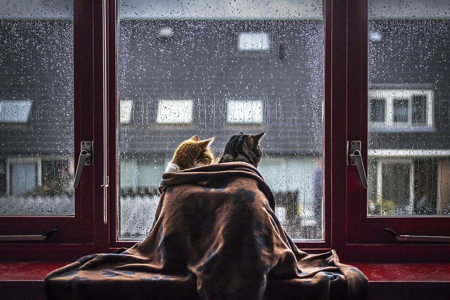Держись крепче: в Днепре объявили штормовое предупреждение