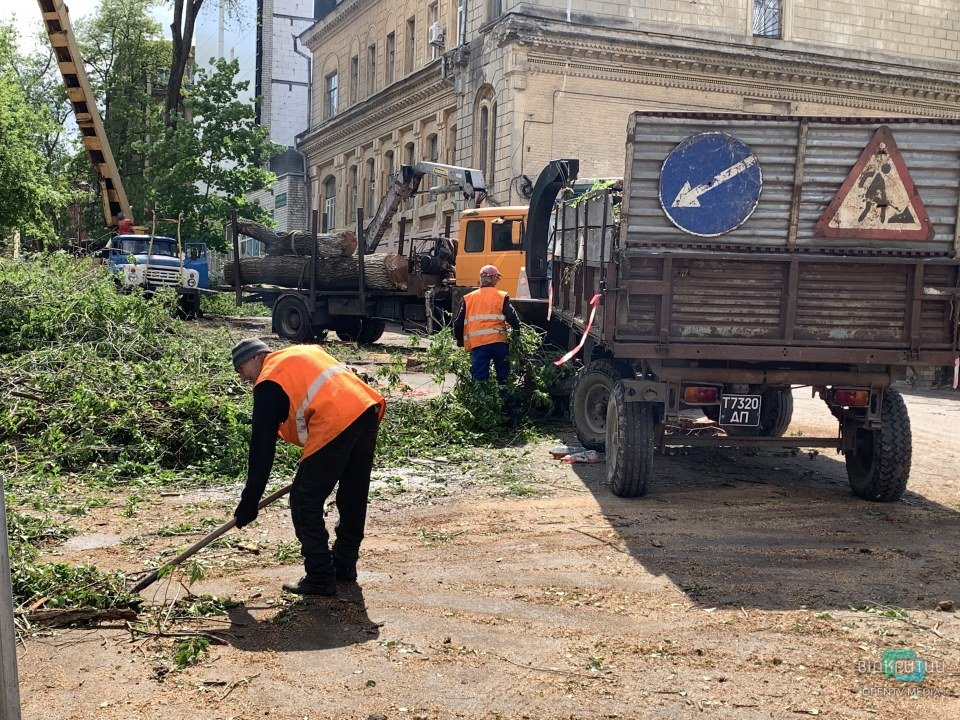 В Днепре на улице Яворницкого массово пилят деревья: что здесь будет (ФОТО, ВИДЕО)