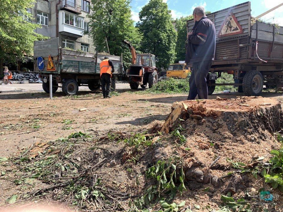 В Днепре на улице Яворницкого массово пилят деревья (ФОТО)