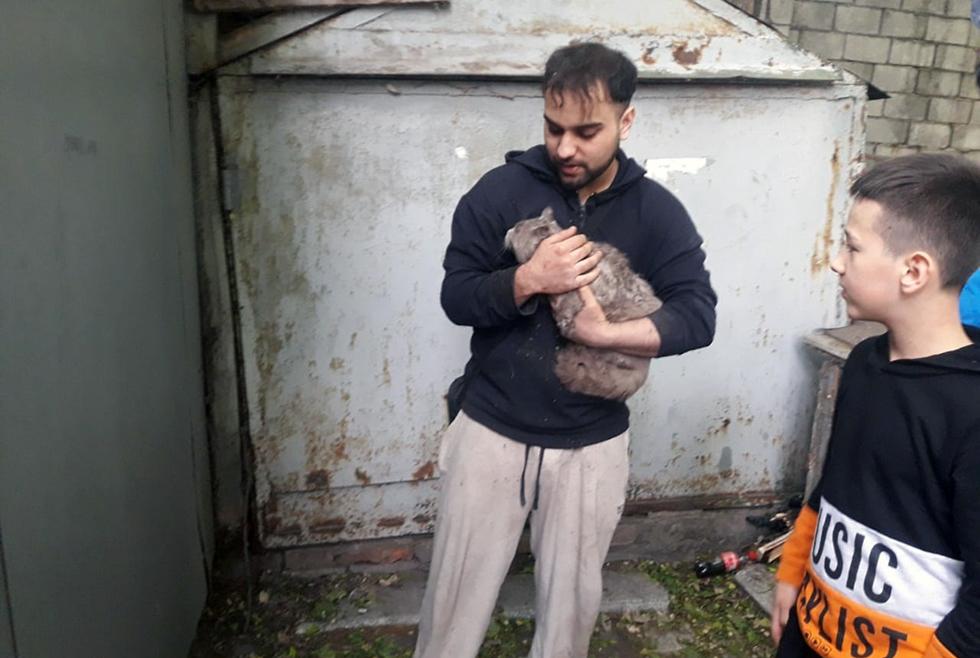 Спасатели помогли котику Днепр