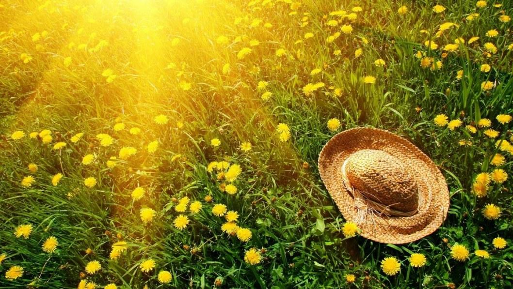 28 мая: какой сегодня праздник