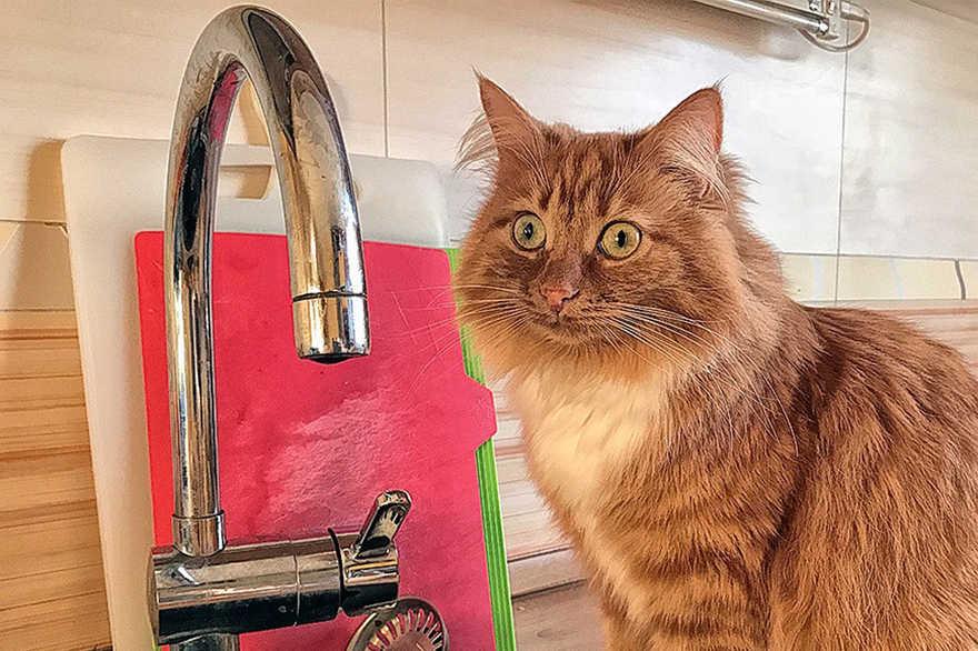 Готовься заранее: центр Днепра 27 мая останется без воды (АДРЕСА)