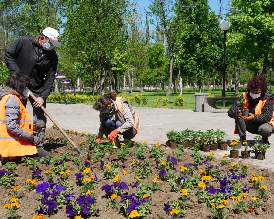 Под Днепром сделали огромную бабочку из цветов (ФОТО)