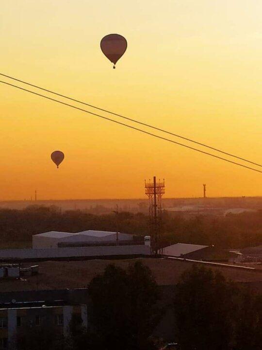 ТОП-5 хороших новостей в Днепре за неделю: пушистики, воздушные шары и уникальный парк (ФОТО)