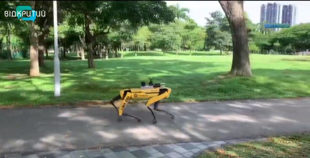 Роботы-контролеры и прогулки в парках: как в мире выходят из карантина (ВИДЕО)