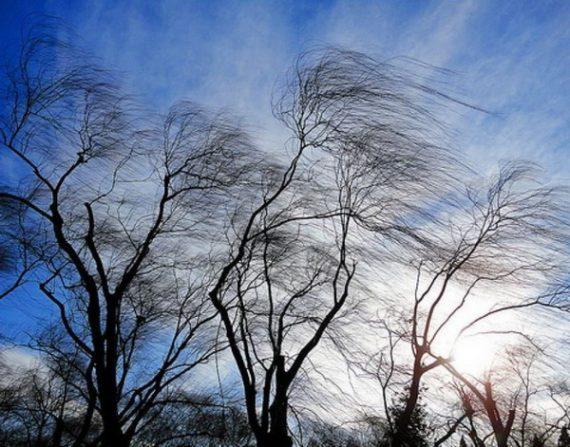 Уровень опасности желтый: в Днепре и области ожидаются сильные порывы ветра