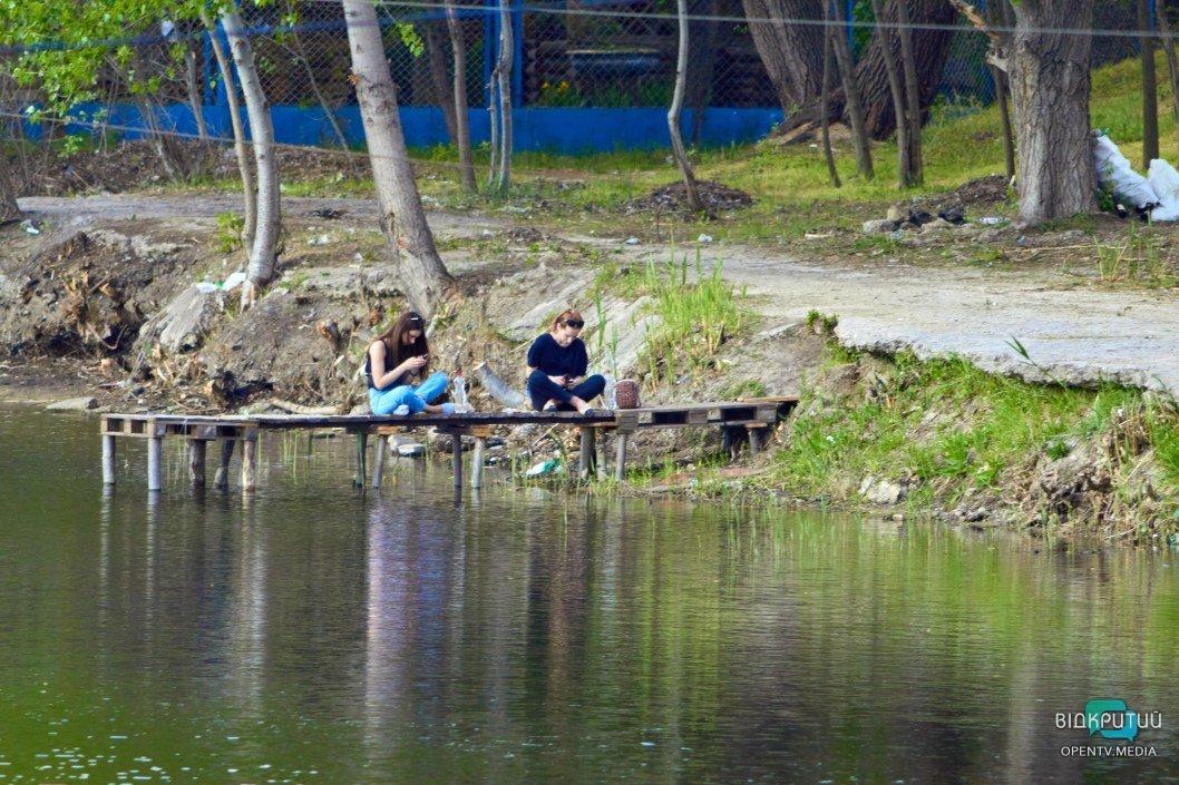 Лес на Фрунзенском