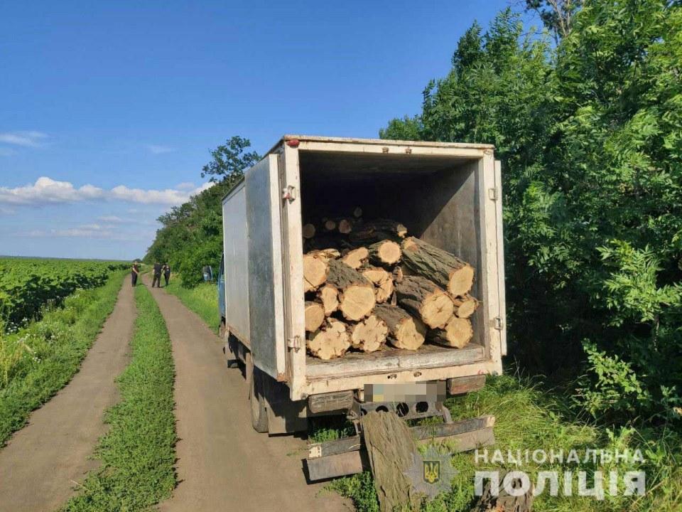 В Кривом Роге полиция задержала мужчину, который занимался незаконной вырубкой деревьев