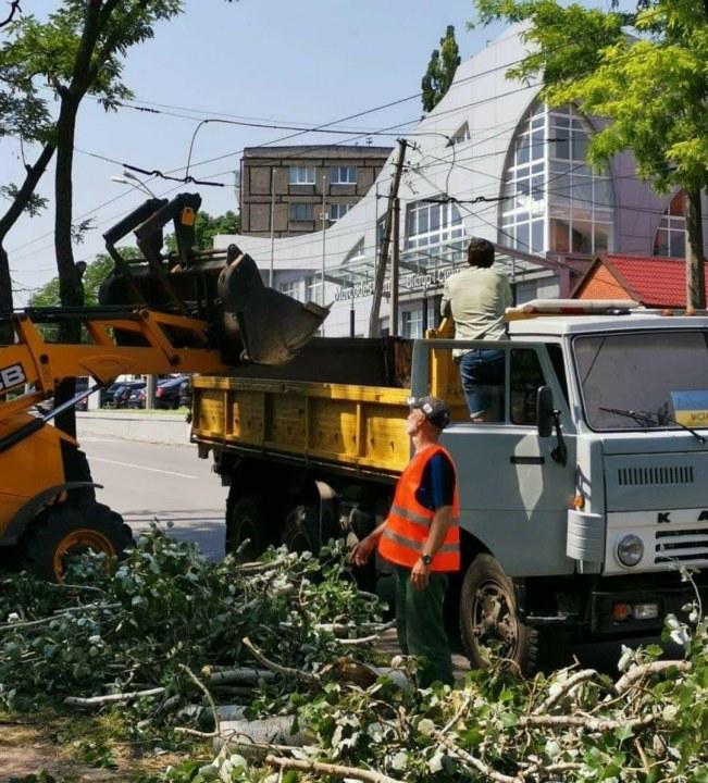 Поваленные деревья и оборванные провода: в Днепре продолжают ликвидировать последствия вчерашней непогоды (ФОТО)