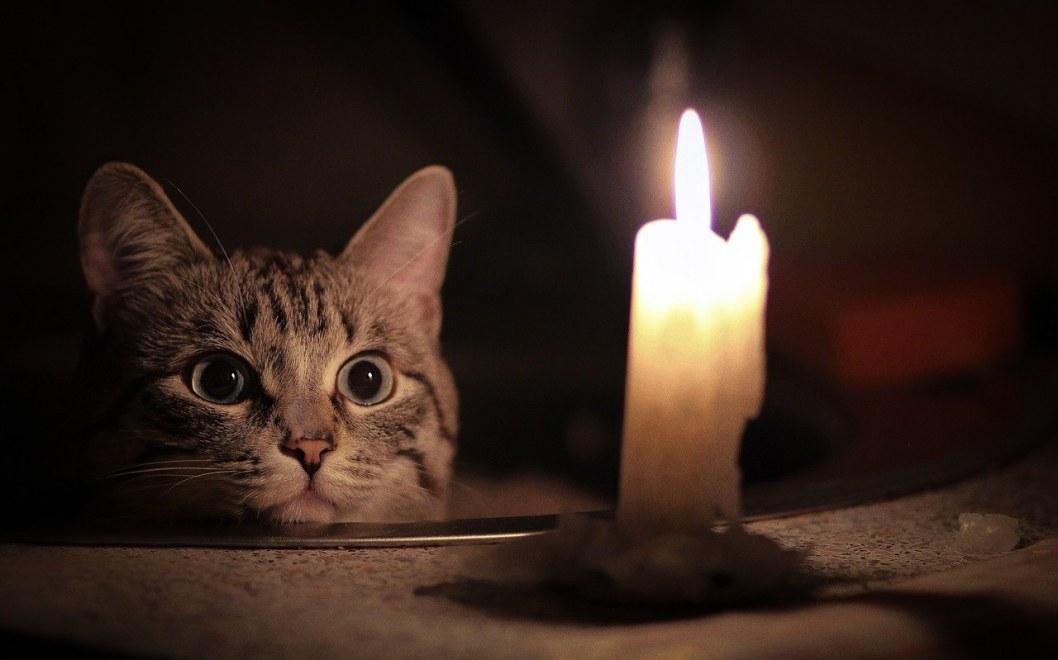 Пять районов Днепра сегодня останутся без света: узнай адреса