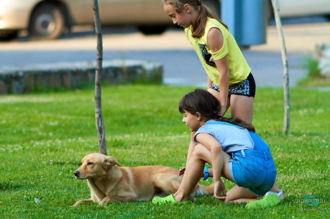 Интересно, почему дети так сильно любят животных?