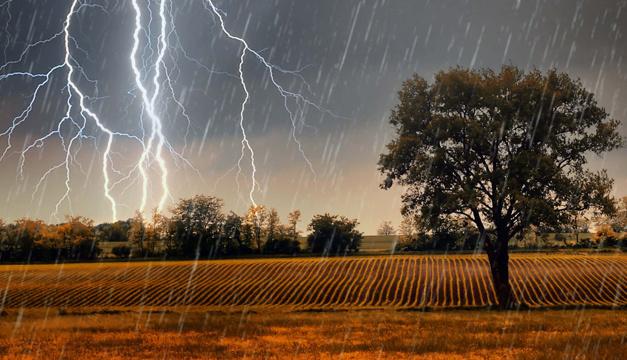 Штормовое предупреждение: на Днепропетровщине прогнозируют грозу и шквальный ветер