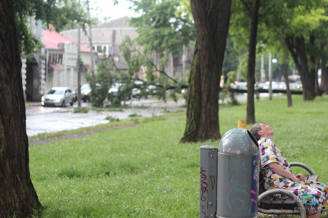 Стихия в Днепре: на Пушкина упавшее дерево перегородило проспект, оборвало провода и парализовало транспорт (ФОТОРЕПОРТАЖ)