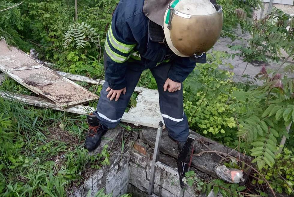 В Каменском пёс провалился в 3-х метровый погреб
