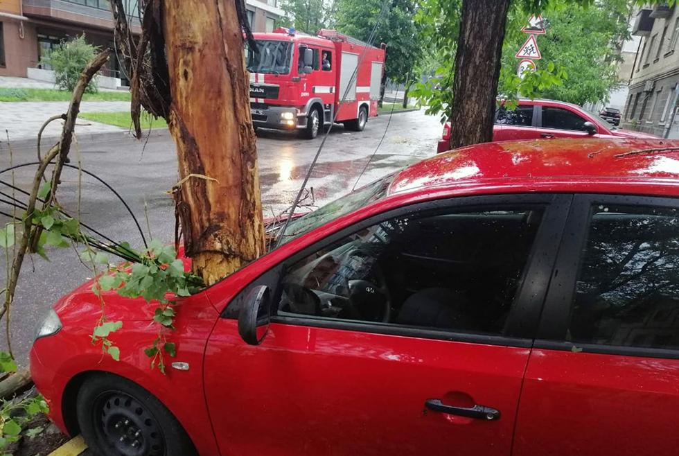 Полсотни упавших деревьев и 2 тысячи абонентов без света: последствия непогоды в Днепре (ФОТО, ВИДЕО)