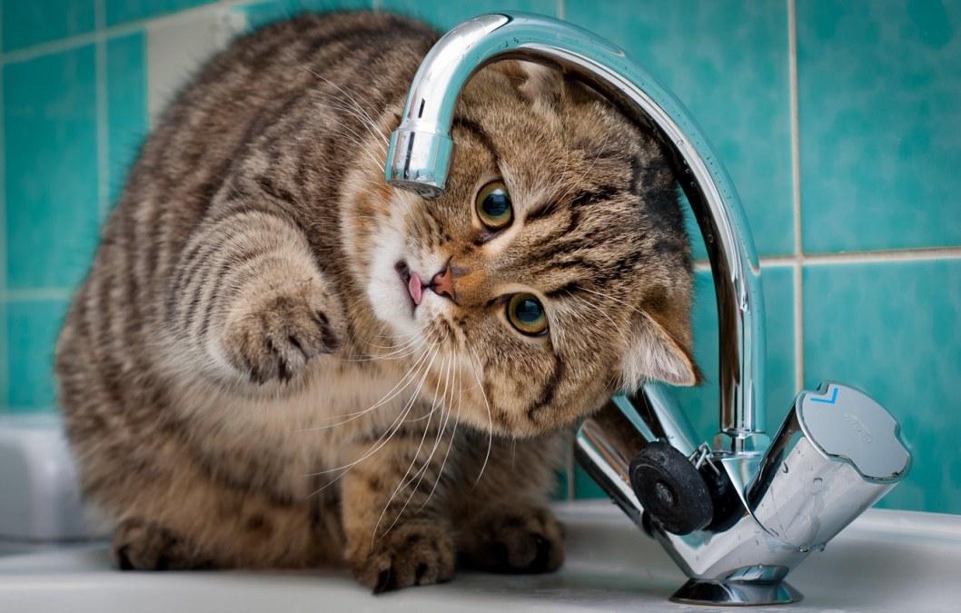 Запасайтесь заранее: где в Днепре во вторник не будет воды