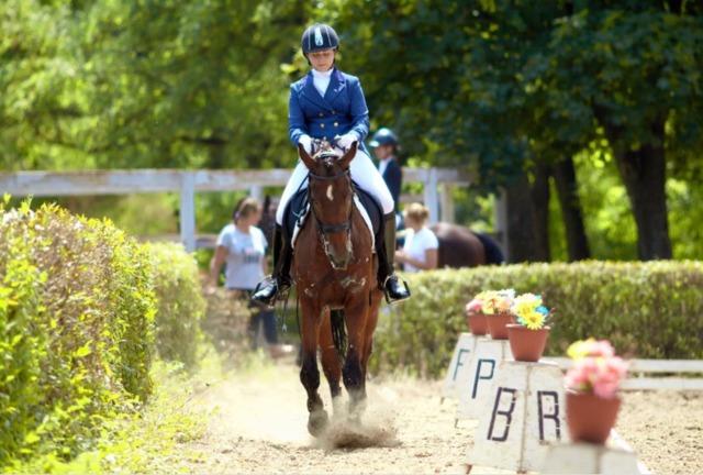 На Днепропетровщине прошел первый этап всеукраинских соревнований по конному спорту