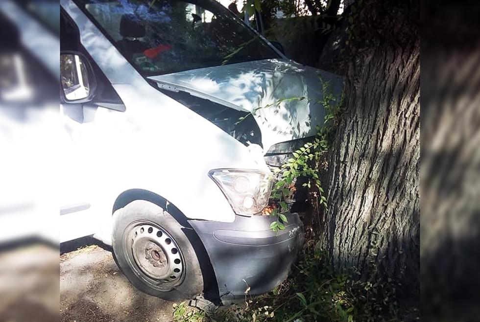 В Днепре микроавтобус врезался в дерево: пострадало 6 человек