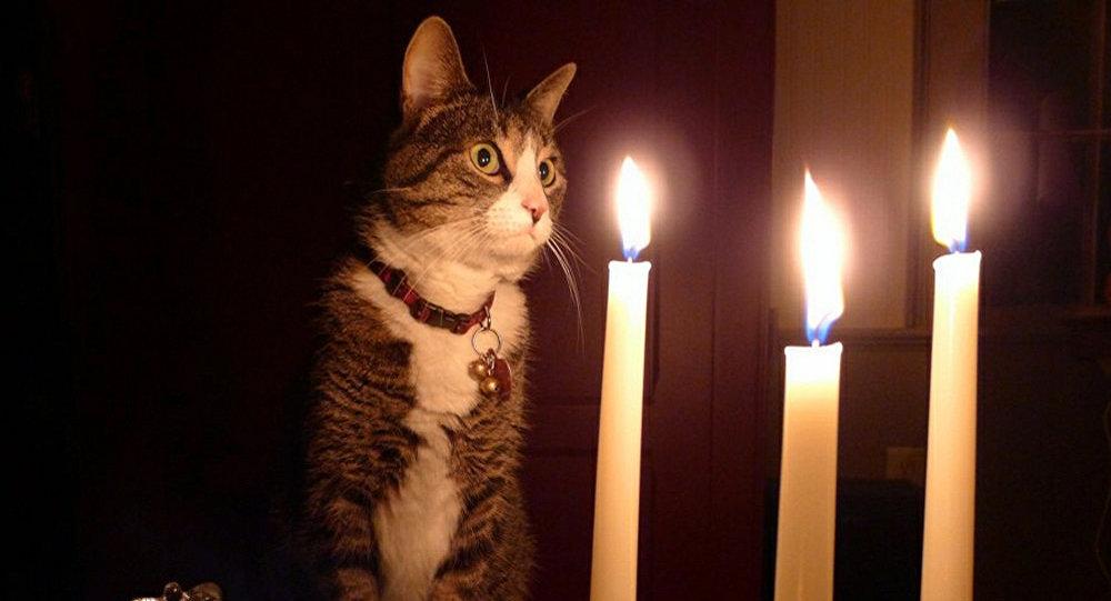 В Днепре в субботу могут отключить свет в четырёх районах