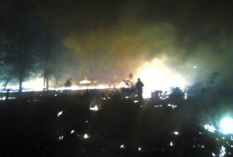 Ночной пожар: в Марганце горело 5 гектаров леса