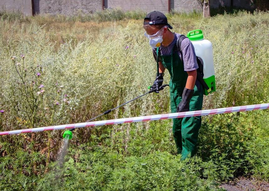 В Днепре одну из улиц огородили лентой и опрыскивают: что происходит