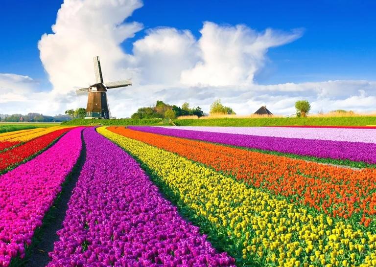 Нидерланды ввели карантин для приезжих с Украины