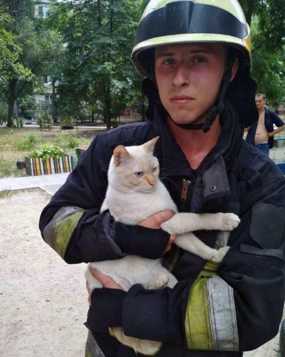 В Днепре котика спасали из 3-метровой ямы