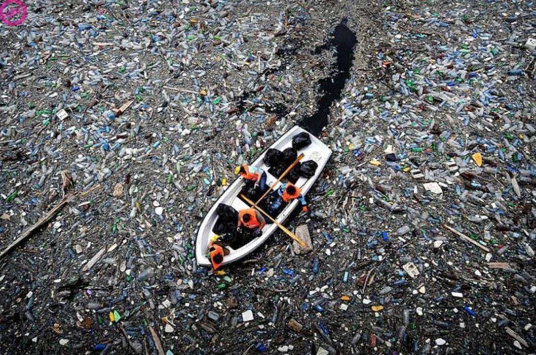 Экологическое бедствие в Днепропетровской области: река превратилась в зловонное болото (ВИДЕО)