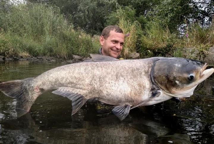 В Днепре подводный охотник подстрелил гигантского толстолоба