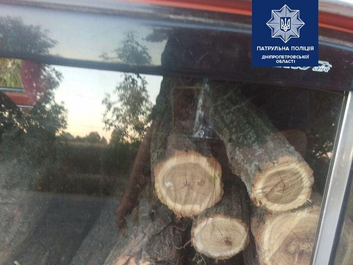 На Днепропетровщине задержали горе-лесорубов с наркотиками