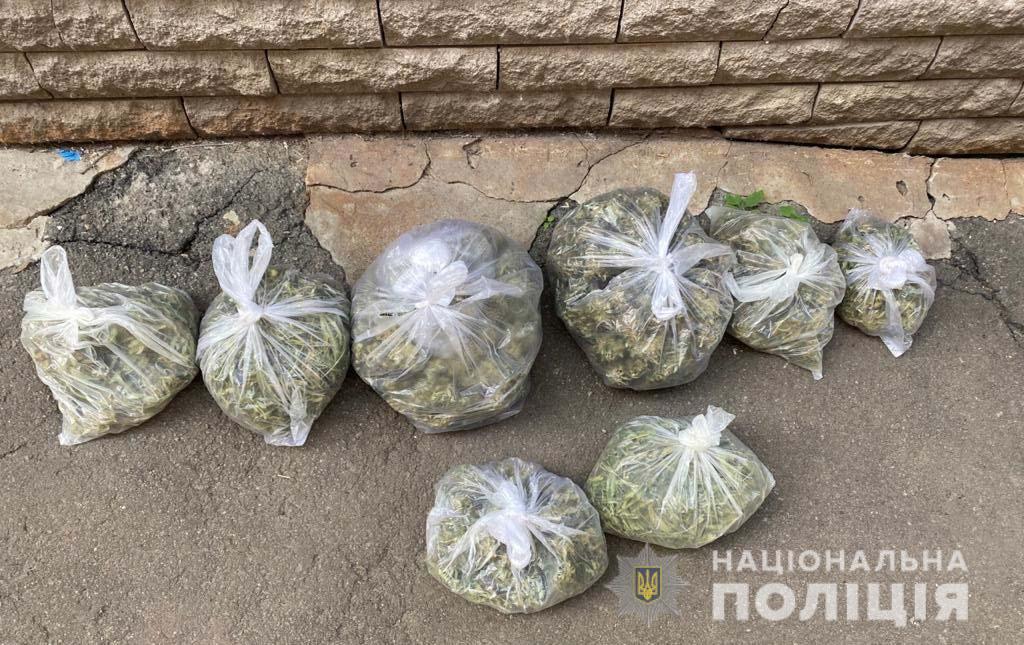 В Новомосковске у местного жителя изъяли 8 пакетов с наркотиками