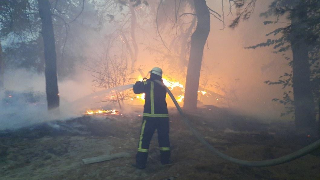В Луганской области из-за масштабных пожаров эвакуируют села