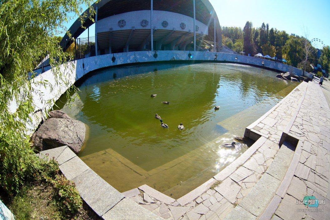 В днепровском парке Глобы озеро может выйти из берегов (ФОТО)