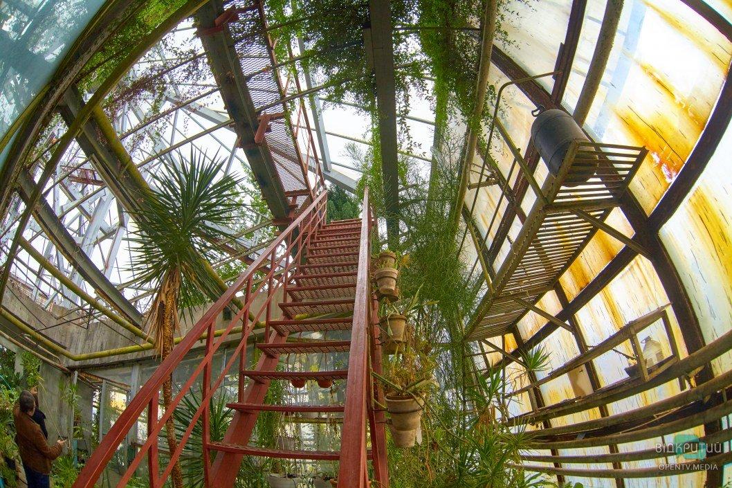 В Днепре отмечают 89-ю годовщину создания Ботанического сада