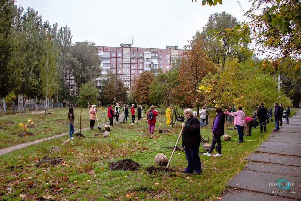 В Днепре на жилмассивах Покровский и Красный камень высадили 70 молодых деревьев
