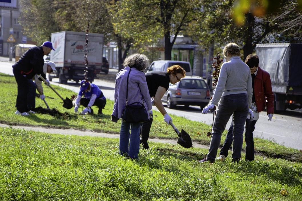 """В рамках программы озеленения Днепра слушатели """"Университета третьего возраста"""" высадили 170 деревьев"""
