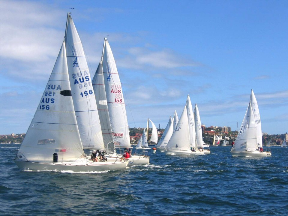 J 24 yacht racing Sydney Harbour