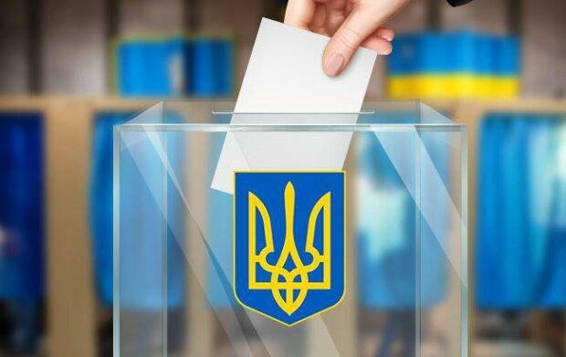 В Новомосковске партию Шария не допустили к выборам