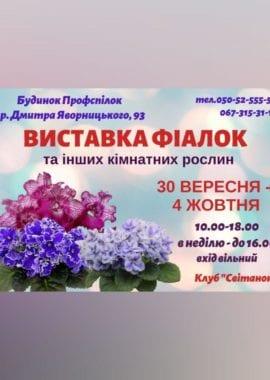 photo 2020 09 20 13 51 55 270x380 1