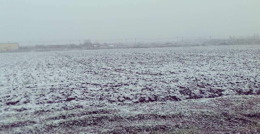 В Днепре выпал первый снег (ФОТО)