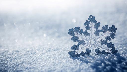В Харькове и Сумской области выпал снег: какая погода ждёт днепрян в ближайшее время